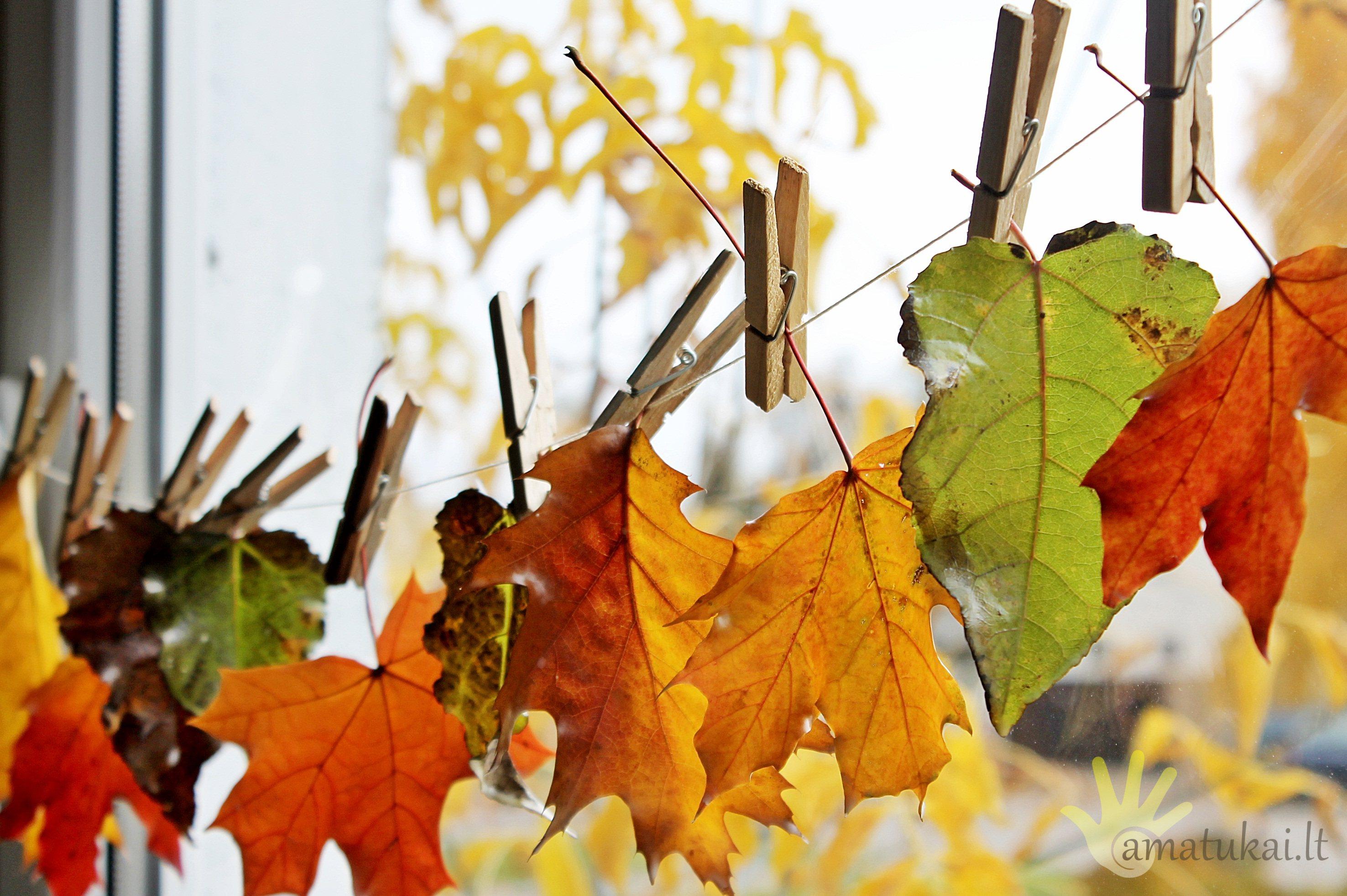 rudeniniu_lapu_dekoracija_ant_lango